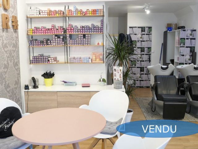 Local professionnel Angers Doutre E-BIS-IMMOBILIER